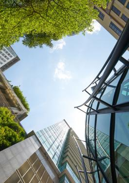 green building and energy efficiency consultancy with bureau veritas